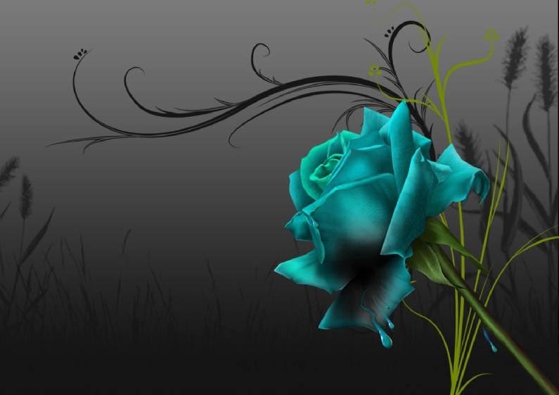 kwiat4_promiennik_upiekszajacy_wnetrze